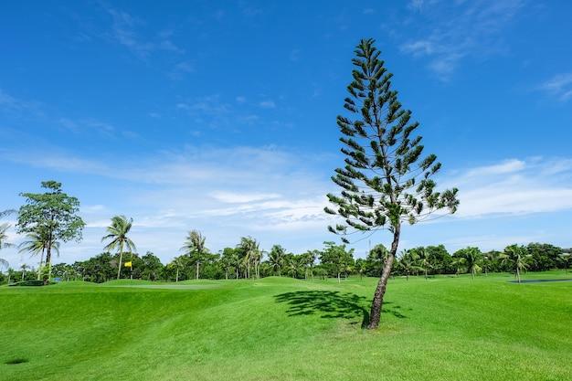 Pin dans les grandes pelouses vertes, parcours de golf