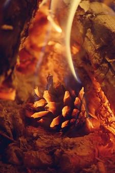 Le pin de pomme de pin brûle dans le feu