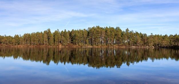 Pinède, forêt de pins se reflétant dans un lac dans le désert de la norvège, panorama