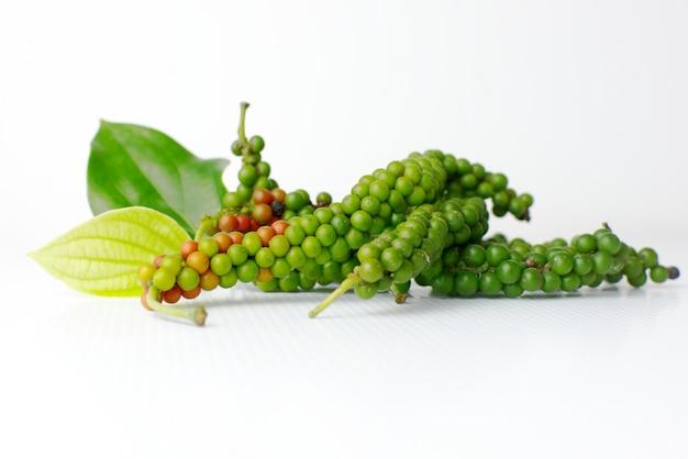Piper nigrum et feuilles ou poivron vert ou épices fraîches sur fond blanc