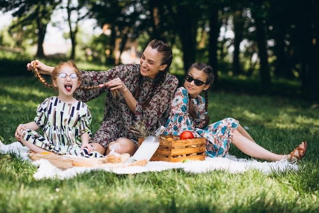 Pique-nique familial dans le parc