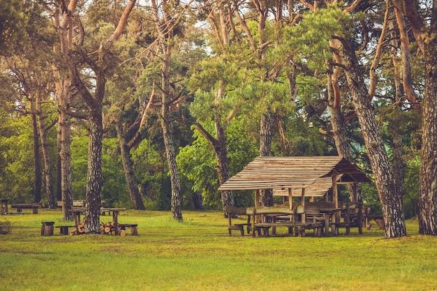 Pique-nique gazebo en bois dans les bois
