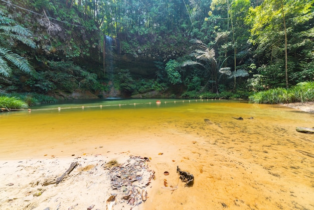 Piscine naturelle cachée dans la forêt tropicale du parc national des collines de lambir, bornéo, malaisie.