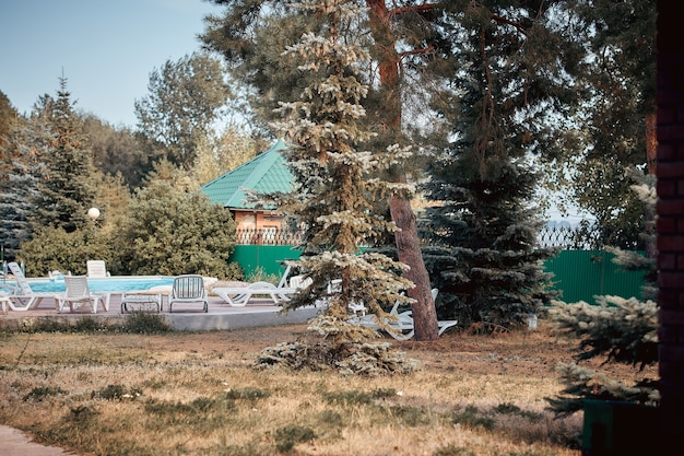 Piscine et transats dans une villa de campagne dans une pinède