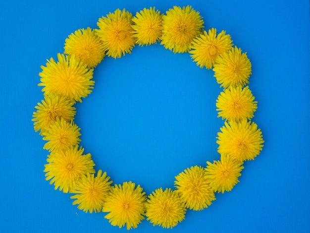 Pissenlit jaune. concept de la nature. été plat