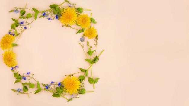 Les pissenlits, les herbes vertes et les petites fleurs bleues reposent sur un fond rose en forme de cercle. flou artistique. il y a une place pour le texte à proximité. maquette de printemps pour les produits publicitaires.