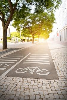 Piste pour cyclistes dans le parc au coucher du soleil