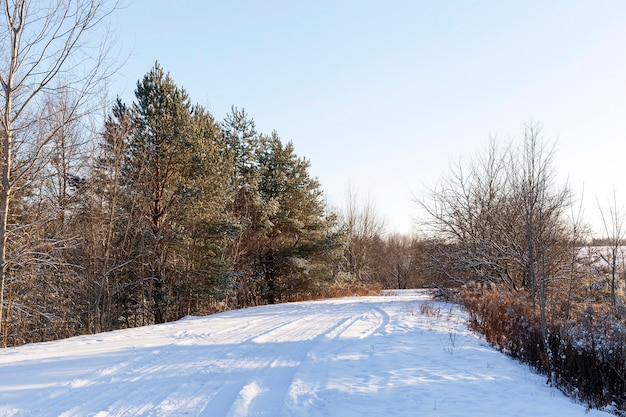 Les pistes de voiture dans la neige en hiver. jauge photo en surface après une chute de neige.