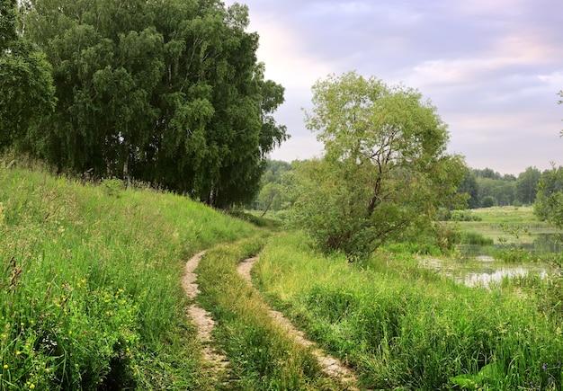 Des pistes de voiture sur la rive du lac dans les fourrés d'herbe des champs sous un ciel nuageux matinal