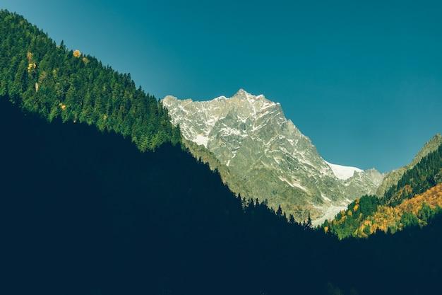 Pittoresque nature des sentiers de randonnée des montagnes du caucase en géorgie.