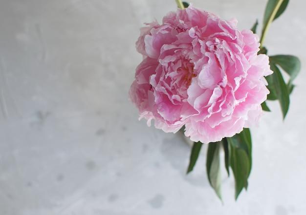 Pivoines fleurs blanc blanc vase thème de mariage
