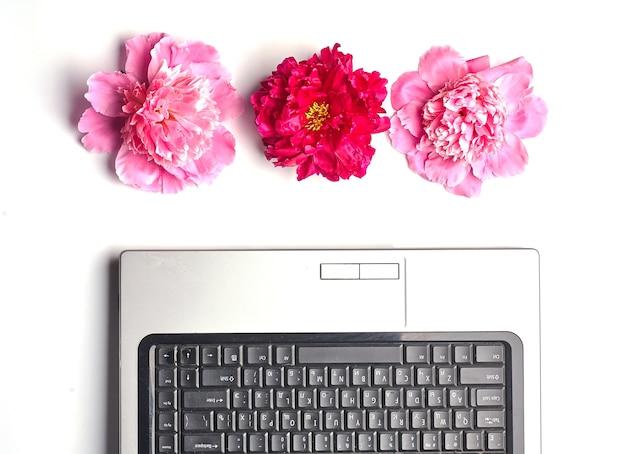 Pivoines et ordinateur portable isolé sur blanc