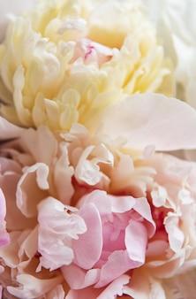 Pivoines roses comme décoration naturelle