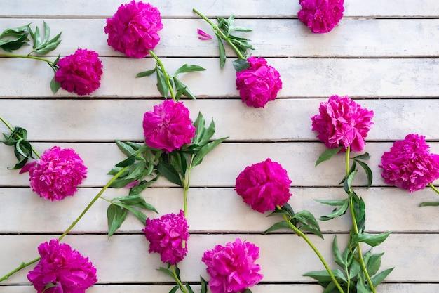 Pivoines roses sur fond de planches de bois brut peintes en blanc. carte de voeux
