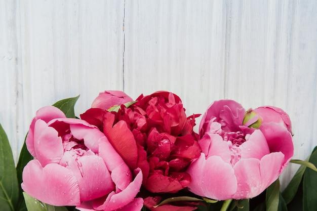 Pivoines roses sur une table en bois blanche avec espace de copie