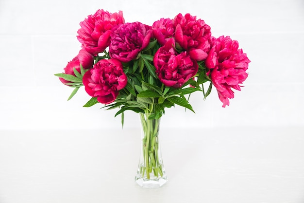 Pivoines rouges dans un vase sur blanc