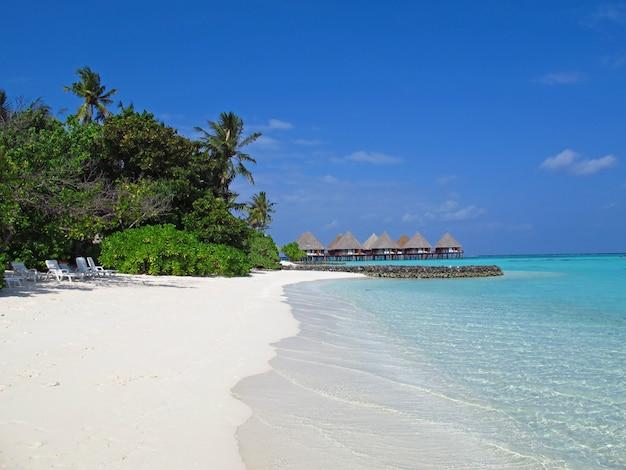 La plage aux maldives, l'océan indien, l'atoll d'ari nord