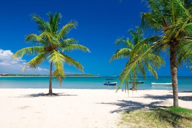 Plage et belle mer tropicale.