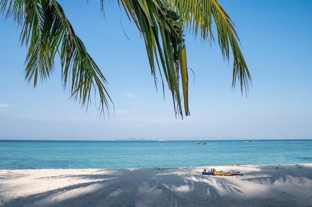 Plage blanche avec des feuilles de palmier à la noix de coco en mer tropicale