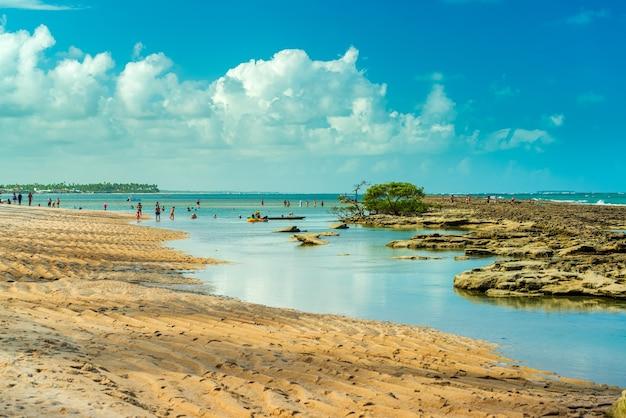 Plage de carneiros tamandare près de recife pernambuco brésil le 8 avril 2019
