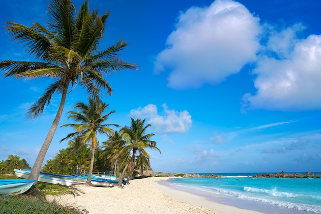 Plage de chen rio sur l'île de cozumel au mexique