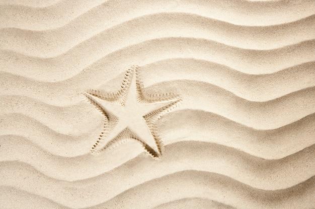Plage étoile de mer impression blanc caraibes sable été
