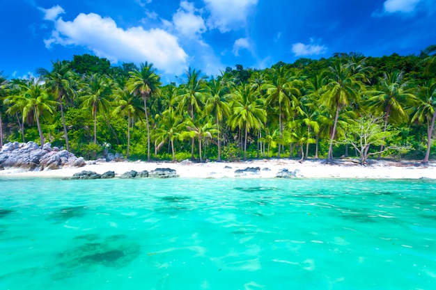 Plage de l'île tropicale