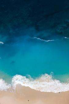 Plage de kelingking sur l'île de nusa penida en indonésie