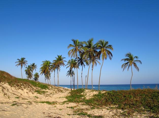 La plage de la mer des caraïbes à la havane, cuba