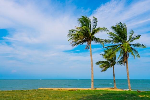 Plage, mer avec palmiers de noix de coco au cours de la saison estivale avec des nuages.