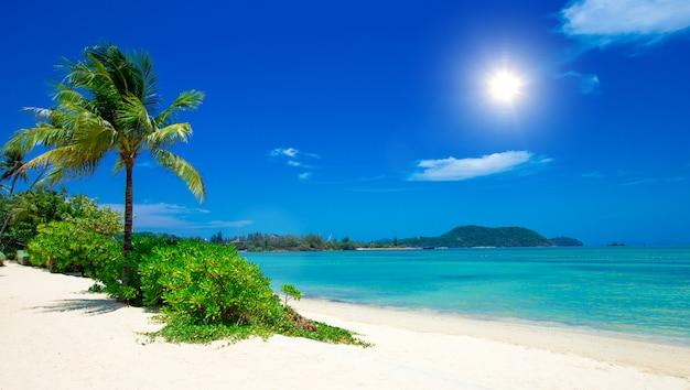 Plage et mer tropicale