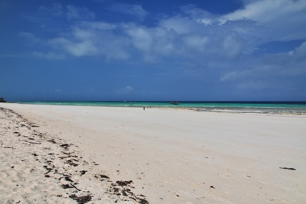 Plage de nungwi dans l'île de zanzibar en tanzanie