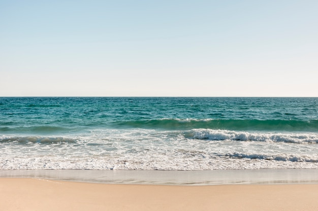 Plage et océan en été