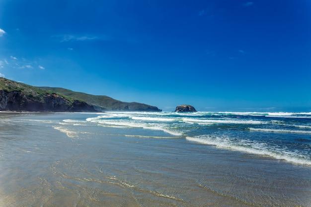 Plage de l'océan vide avec des vagues à otago, nouvelle-zélande