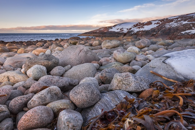 Plage d'œufs de dinosaures avec de gros rochers ronds côte de la mer de barents teriberka russie