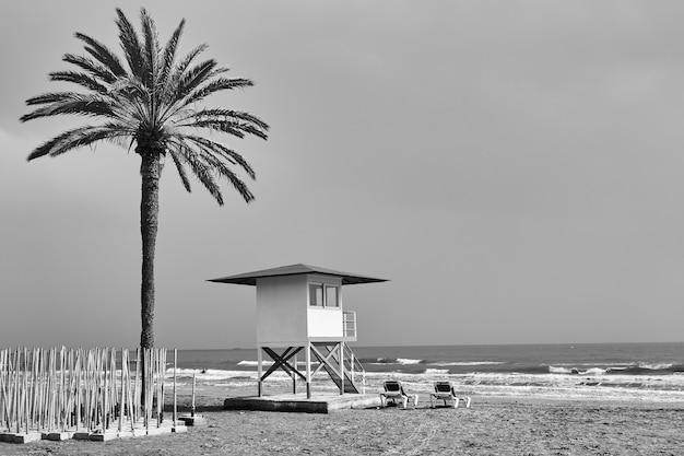 Plage avec palmier et tour de sauveteur en bord de mer en hors saison - photographie noir et blanc