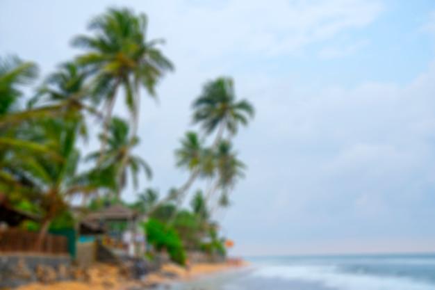 Plage, palmiers, sable, ciel bleu.