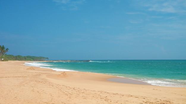 Plage paradisiaque déserte de sable avec des palmiers sur l'océan