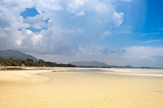 Plage près de palmiers avec vue sur la plage de sable