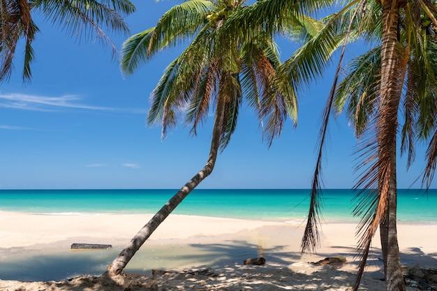 Plage propre nature tropicale et sable blanc en été avec ciel bleu clair soleil