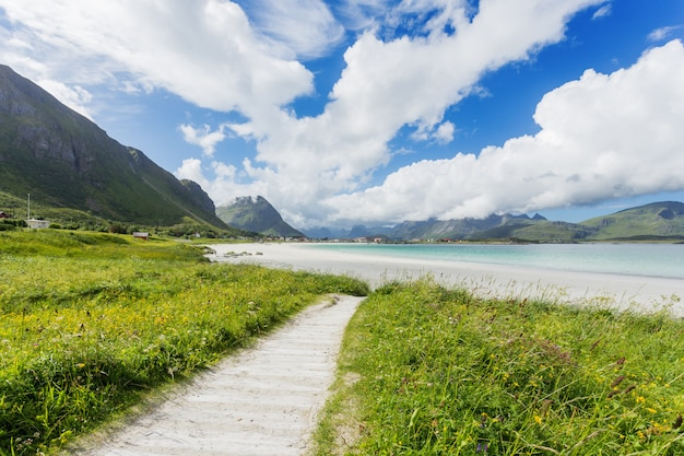 Plage de rambergstranda sur les îles lofoten. belle plage de sable fin. norvège.