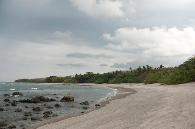 Plage de sable avec des arbres envahissants, avec des rochers dans les vagues, par temps nuageux
