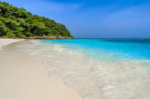 Plage de sable blanc tropical et eau claire turquoise de la mer d'andaman dans la province de phang nga, thaïlande