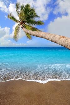 Plage de sable brun des îles canaries aqua tropical