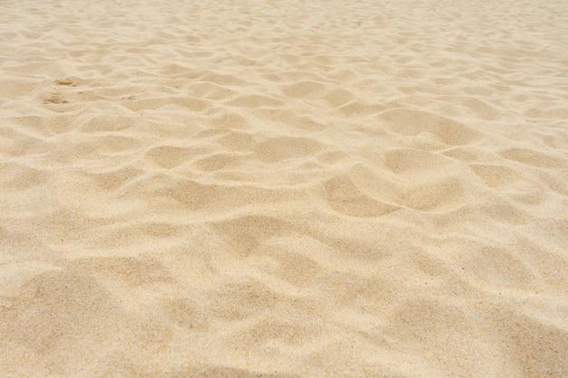Plage de sable en été