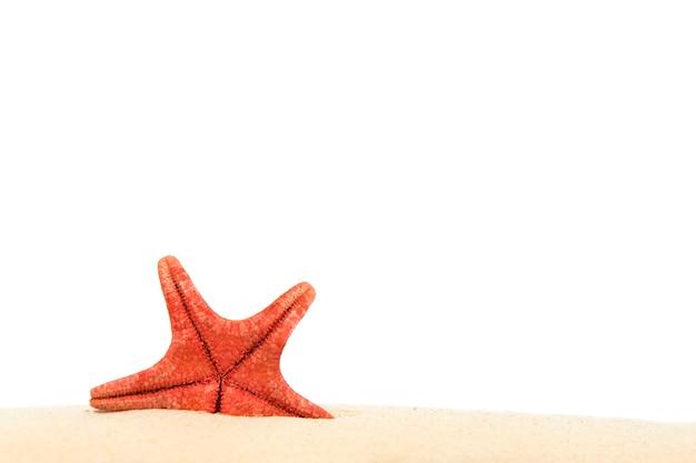Plage avec sable étoile de mer isolé sur blanc