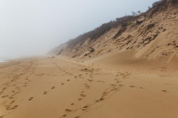 Plage de sable de l'océan dans le brouillard à sedgefield, afrique du sud