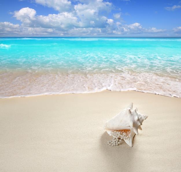 Plage sable perles collier coquille vacances d'été