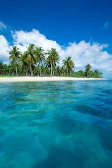 Plage tropicale au sri lanka. concept de vacances d'été et de vacances pour le tourisme.