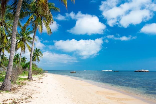 Plage tropicale au sri lanka